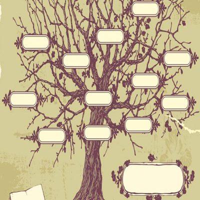 curso online árbol genealógico